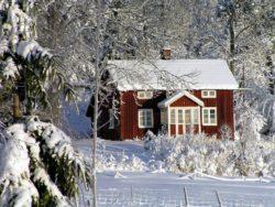 Virusvarning i Sverige - rapport från SVT